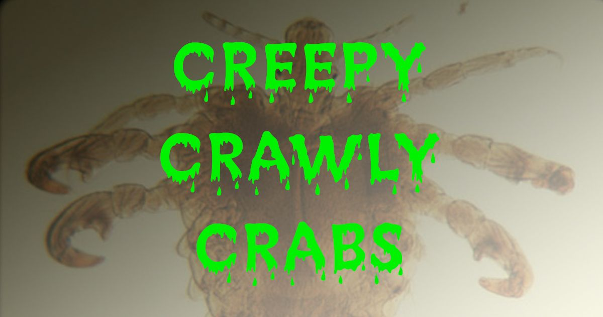 Creepy Crawly Crabs